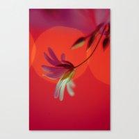 Tangerine Stitch Canvas Print