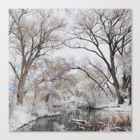 Winter Creek Canopy Canvas Print