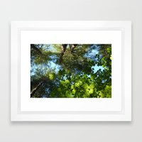 Looking up Framed Art Print