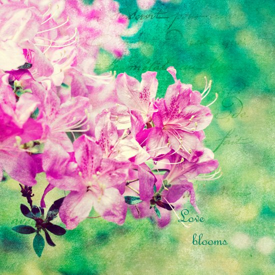 Love Blooms Art Print