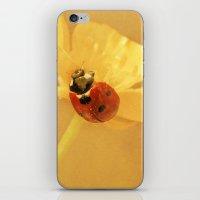 Buttercup Lady iPhone & iPod Skin