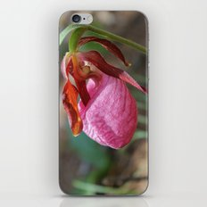 The Pink Lady Slipper iPhone & iPod Skin