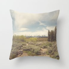 In search of Ansel Throw Pillow