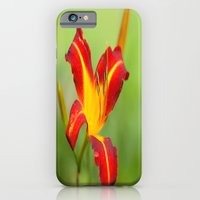 iPhone & iPod Case featuring Opens With Life by Karol Livote