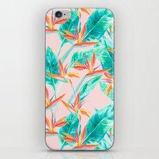 Birds of Paradise Blush iPhone & iPod Skin