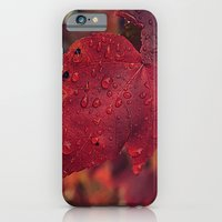 iPhone & iPod Case featuring Fall Drops II  by S|Tarah