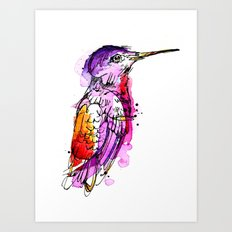 Fuchsia Hummingbird Art Print