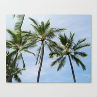 Three palm trees Canvas Print
