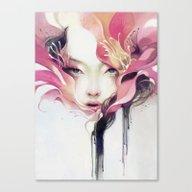 Bauhinia Canvas Print