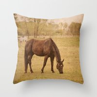 Horse Photograph. Wisconsin Landscape and Nature. Horse Grazing.   Throw Pillow