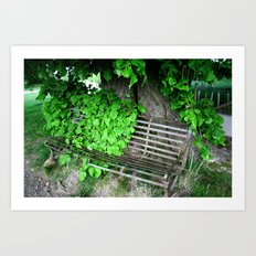 Ivy Bench Art Print
