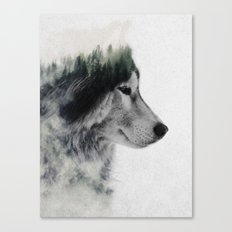 Wolf Stare Canvas Print