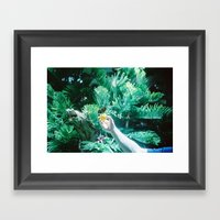 Courtship Framed Art Print