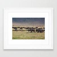 Ngorongoro Framed Art Print