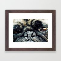Pug-Nosed Framed Art Print