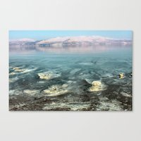 Walking on the moon Canvas Print