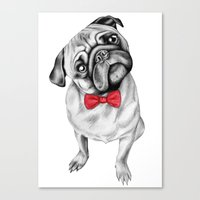 Percy Pug Canvas Print