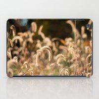 Autumn Light iPad Case