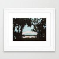 Cumberland Island Framed Art Print