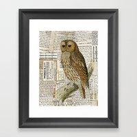 Woodland Owl On Branch I… Framed Art Print