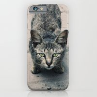 iPhone & iPod Case featuring Staring Contest by BTP Designs