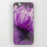 aster and dew iPhone & iPod Skin