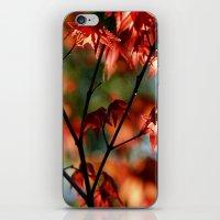 Flora In Flame iPhone & iPod Skin