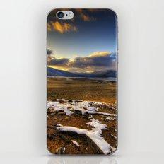 Winter Sun iPhone & iPod Skin