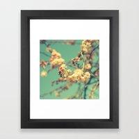 Pink Blue Blossom Framed Art Print