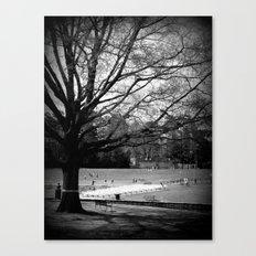 Freedom Park #3 Canvas Print