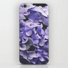 Alone in the Garden iPhone & iPod Skin