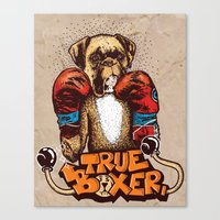 True Boxer Canvas Print