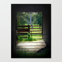 Looking through an old cattle Shed Canvas Print