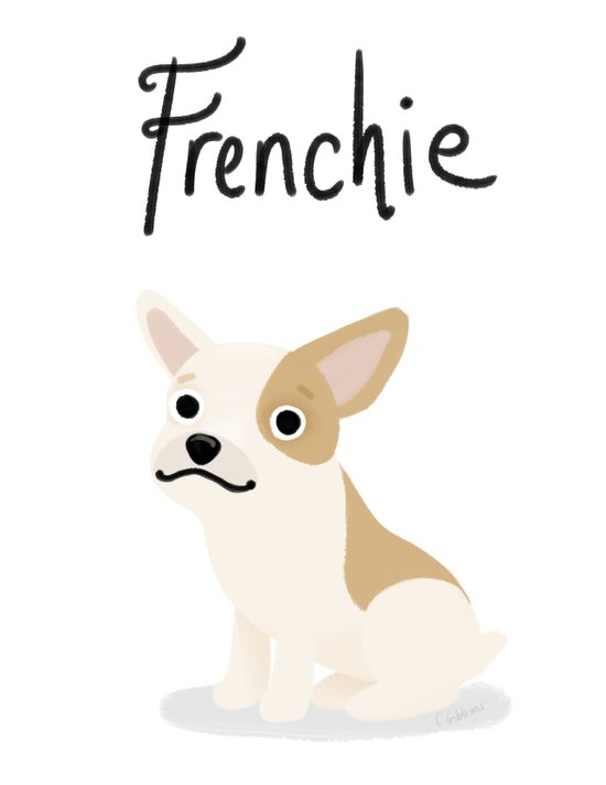 Frenchie - Cute Dog Series Canvas Print