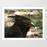 strange eagle Art Print