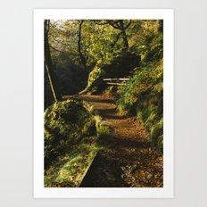 Path at Aira Force Art Print