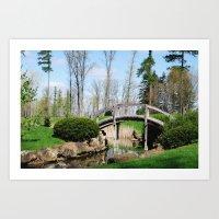 Across the stream Art Print