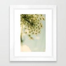Botanical Queen Anne's Lace Framed Art Print