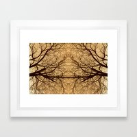 Branches x2 Framed Art Print