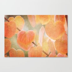 Fading Hearts Canvas Print