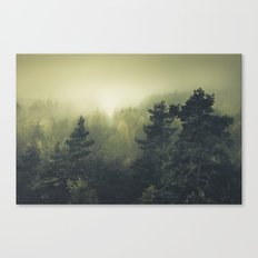 Forests never sleep Canvas Print