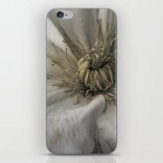 As a Spider iPhone & iPod Skin
