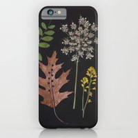 iPhone Cases featuring Plants + Leaves 4 by thedaintysquid