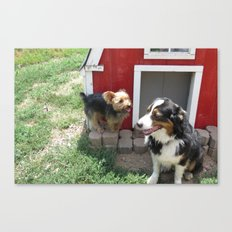 Red Barn Dogs Canvas Print