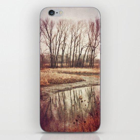 Solitude River iPhone & iPod Skin