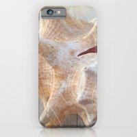 iPhone & iPod Case featuring Conch by Beach Bum Chix