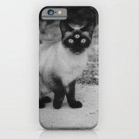 Meow iPhone 6 Slim Case
