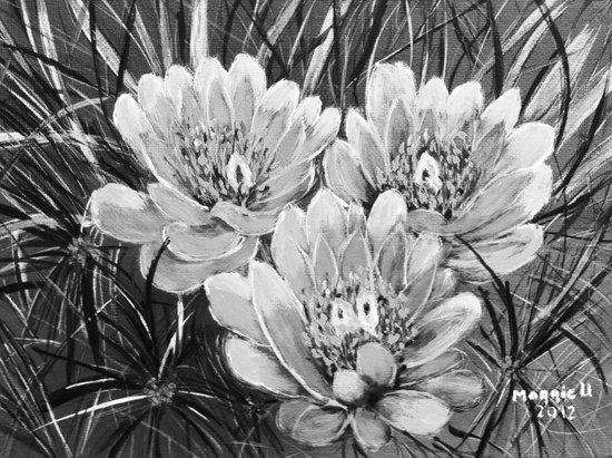 Cactus flower B&W Art Print