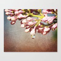 Beautiful Prink Spring L… Canvas Print