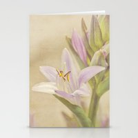 Summer Pastel Stationery Cards